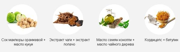 """Состав """"Экзолоцина"""""""
