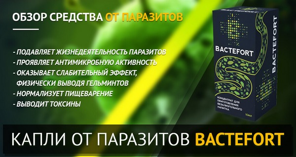 препарат bactefort можно заказать через официальный сайт