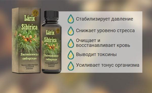 """Действие """"Ларикс Сибирика"""""""