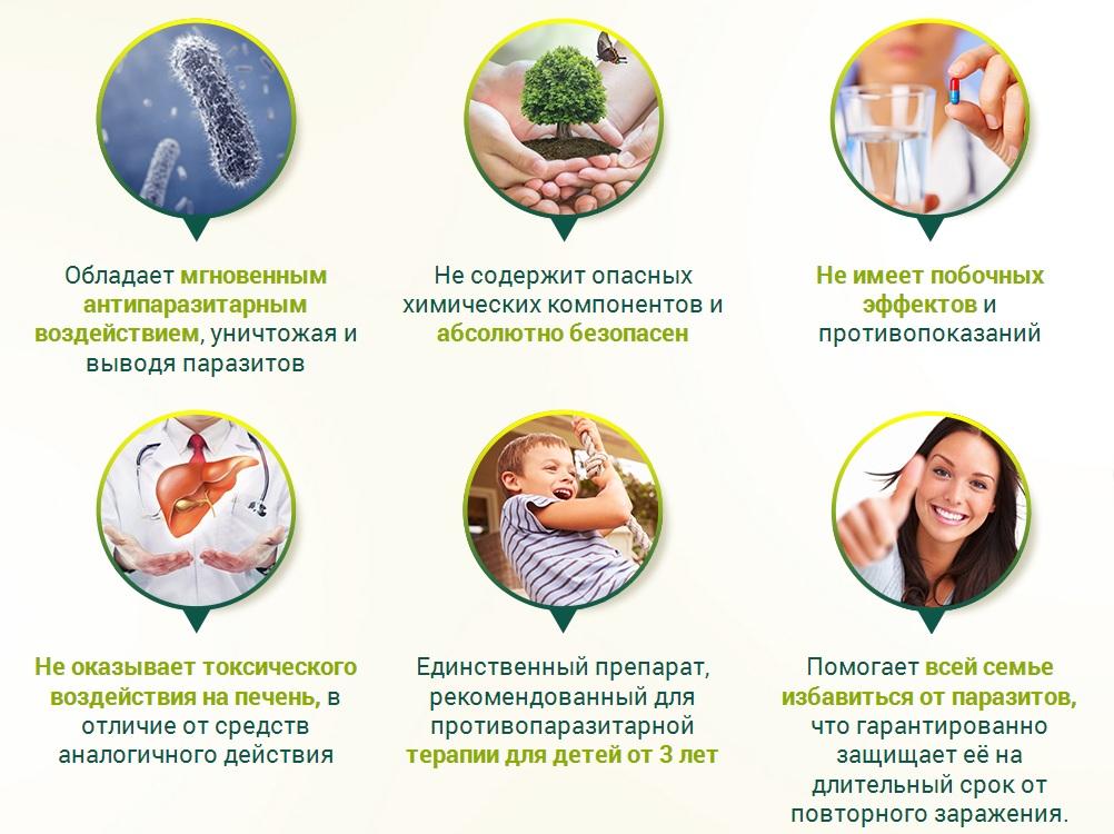 Особенности применения Ветоксика